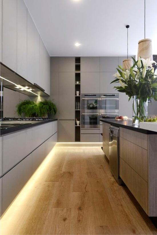 Plantes à l'intérieur de la cuisine