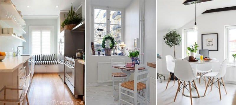 Plantes d'intérieur dans la cuisine