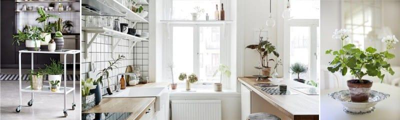 Valaistus keittiössä ja kasvavilla kasveilla