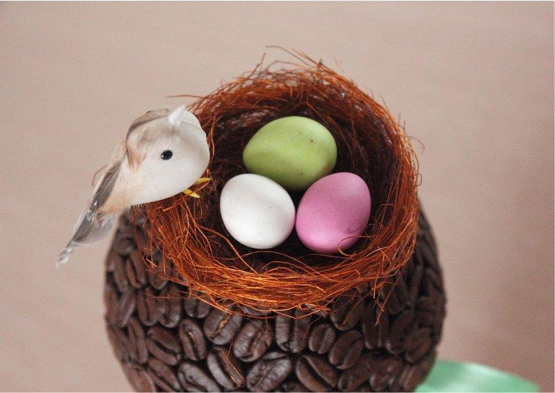 Kávébab fa fészkel és madárral