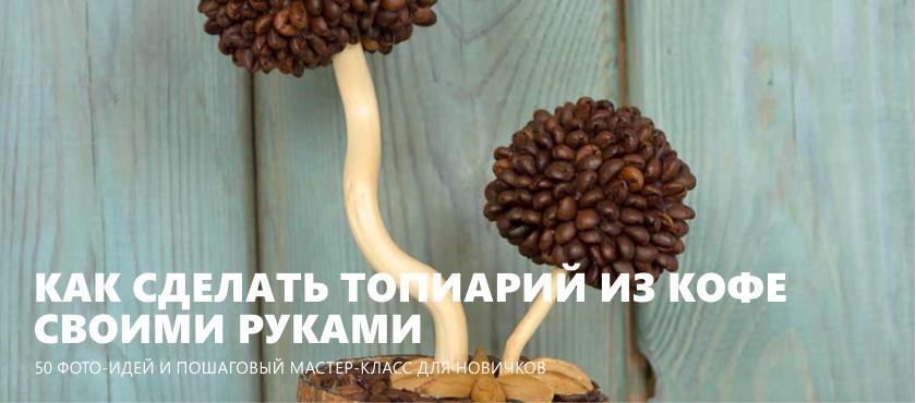 Café Topiaire faites-le vous-même
