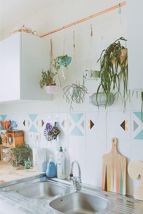 Plantes dans la cuisine