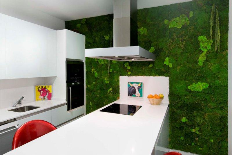 Mousse stable à l'intérieur de la cuisine