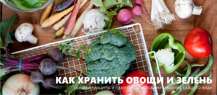 Hogyan tároljuk a zöldségeket és a zöldeket