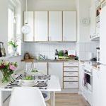 Baltā virtuves interjers