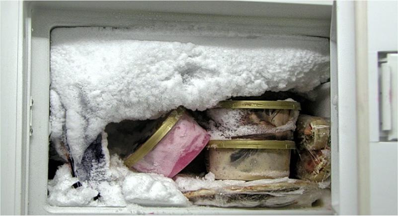 מעיל שלג במקפיא